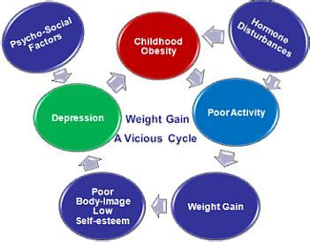 Sample Essay: Obesity in South Africa Custom Essays